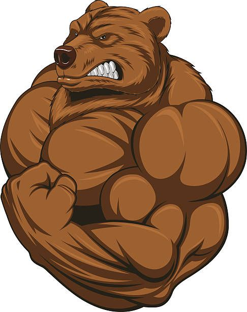 The Bear Protocol for size and strength
